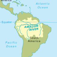 Amazon is not just a river